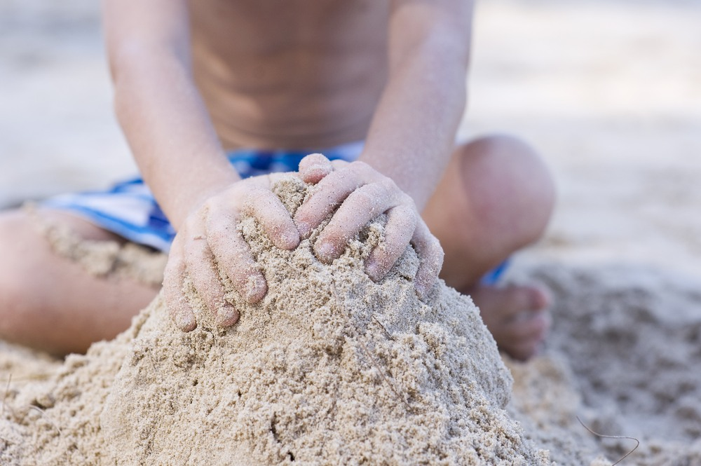 Sand Forts to keep pests away