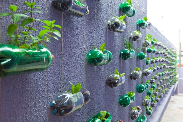 Use waste plastic bottles