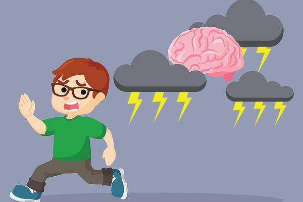 impact of stress on the developing brain