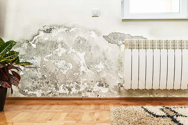 Be Free From Damp Walls And Leakages